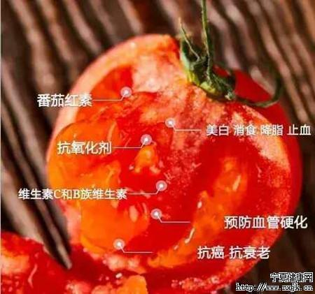 西红柿5_副本.jpg