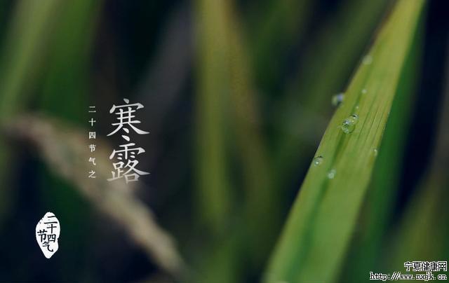 寒露1.jpg